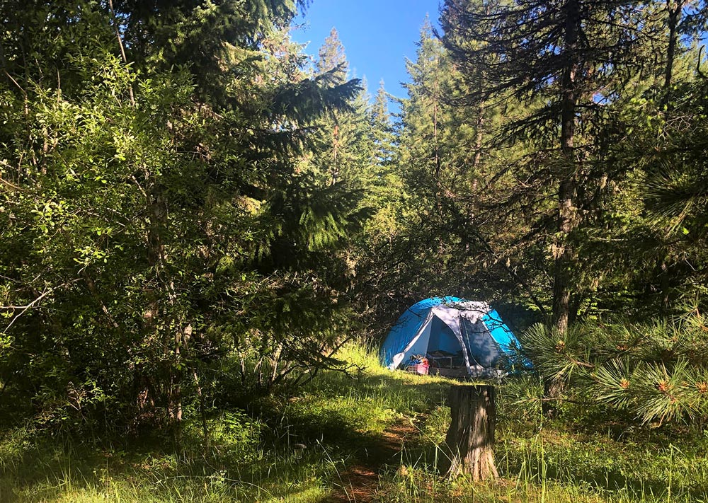 tent camping at Willow-Witt Ranch